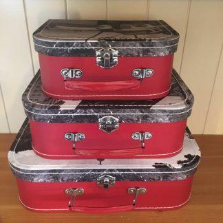 Coke Storage Case Set